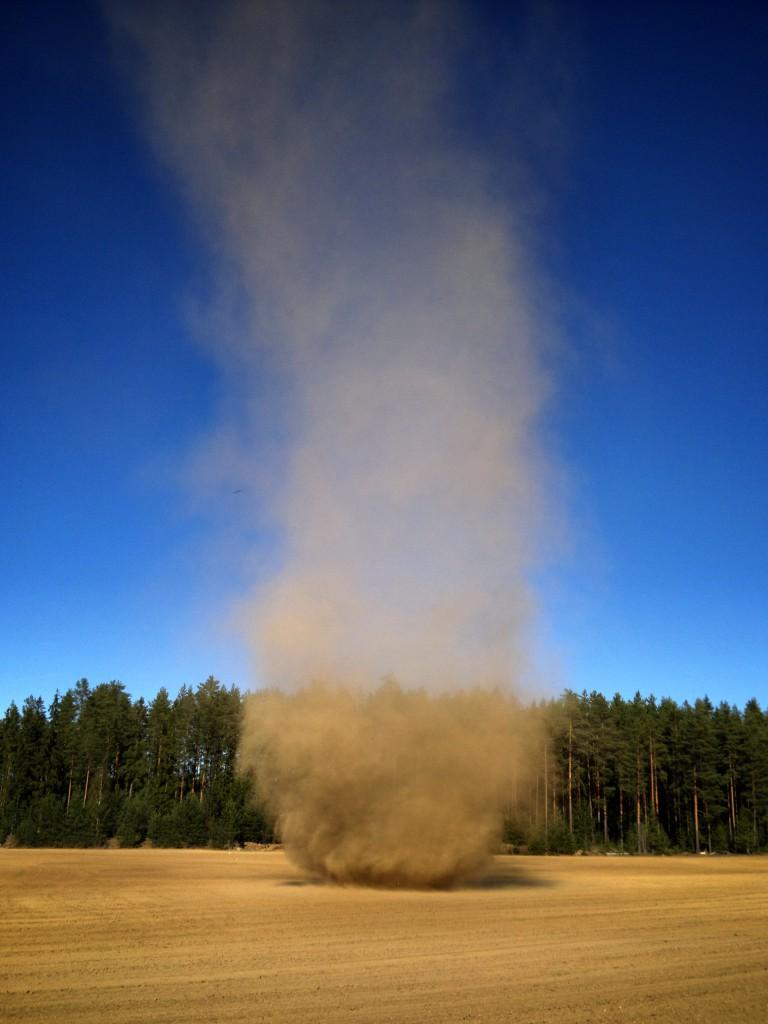 Pölypyörre vuonna 2011. Kuva: Milko Konttinen
