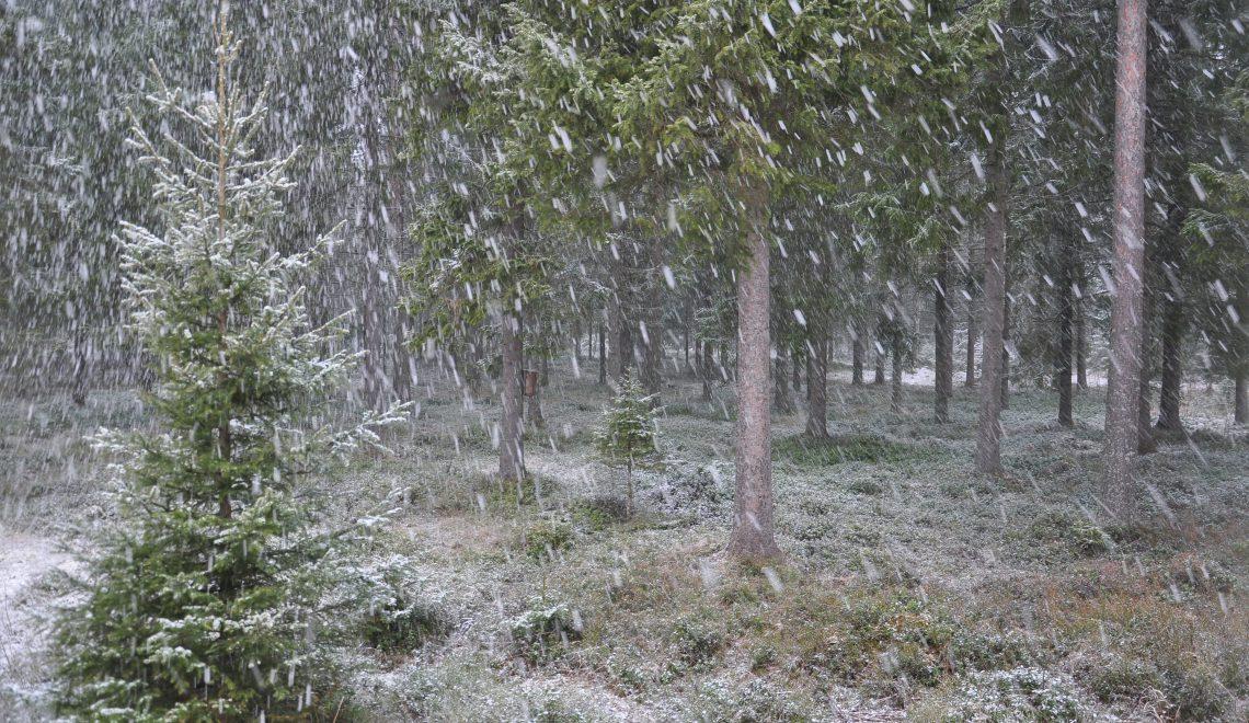 Suomen sää vuodenvaihteessa