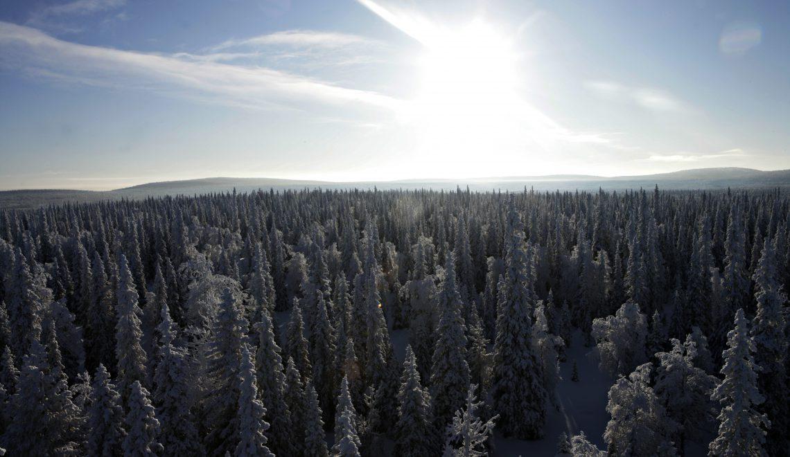 Talvikuukaudet määräävät vuoden keskilämpötilan