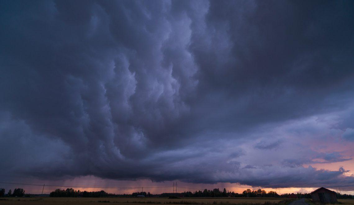 Myrsky ravistelee kävijöitä uudessa näyttelyssä