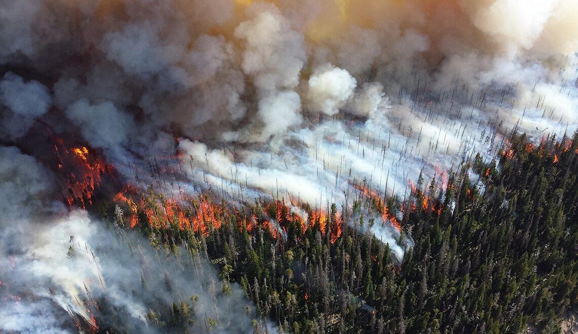 Metsäpalo ilmasta kuvattuna