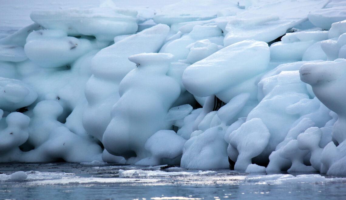 Jääkauden voittajat