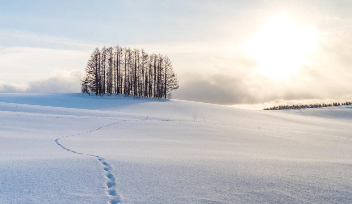 Suomen lumiolosuhteet muutoksessa