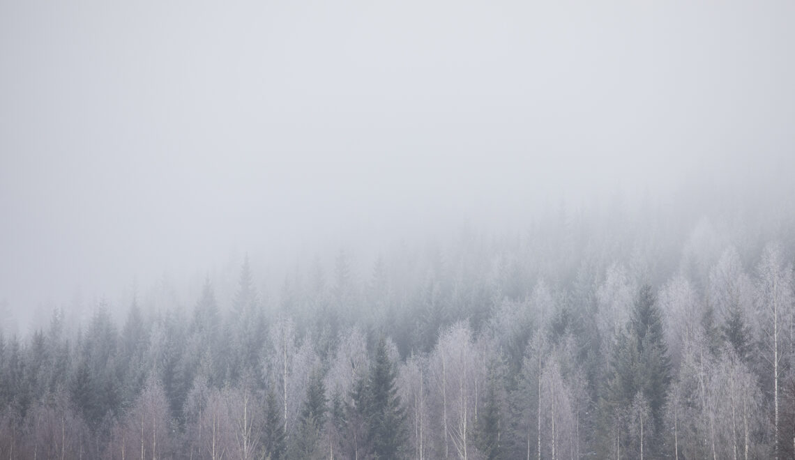 Record mild winter of 2019/2020 in most of Finland